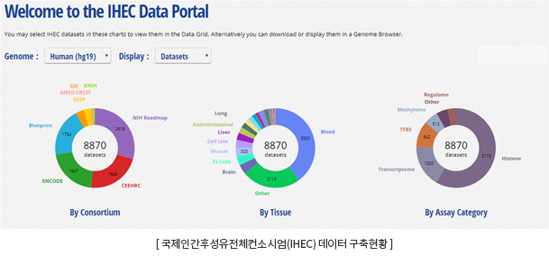 IHEC Data Portal 사이트 Genome : Human(hg19), display : datasets 각 컨소시엄 별, 조직별, assay category별 8870건의 datasets 존재
