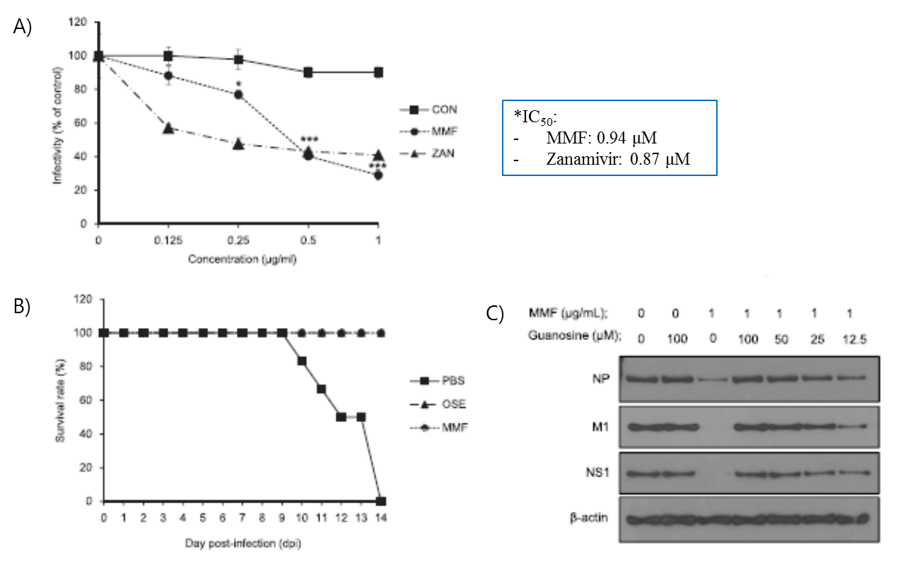 MMF anti-viral activity and mechanism. (A) Half-maximal inhibitory concentrations of MMF or zanamivir in MDCK cells. B) Mice survival rate (%) of MMF and oseltamivir (OSE) treatment with three mouse LD50 of H5N1 virus infection. C) Anti-viral mechanism of MMF. MMF depleted guanosine: supplement of exogenous guanosine restored H5N1 viral NP, M1, and NS1 proteins.