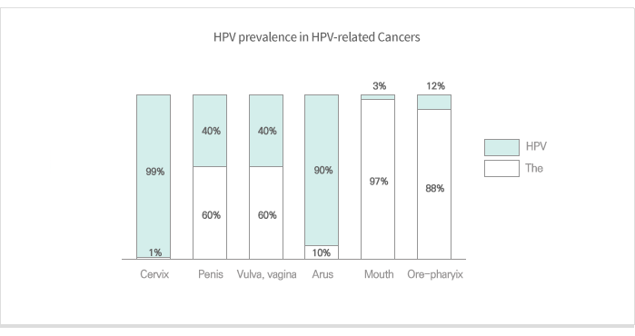 HPV prevalence in HPV-related Cancers